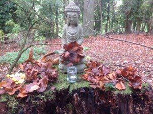 Forest School - Buddha with peace poppies